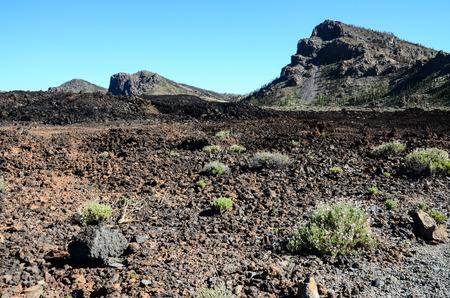 Sunset Desert Landscape in Tenerife Canary Island Spain