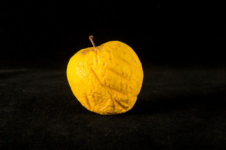 Old apple that is beginning to rot isolated
