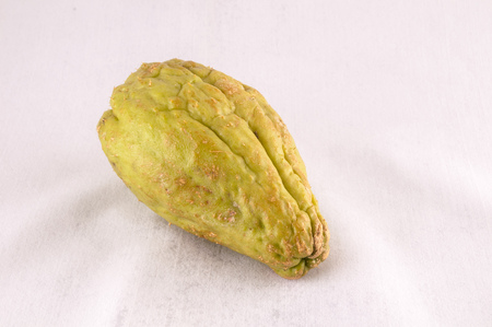 Chayote (Sechium Edule) is a Vegetable Native of South America Foto de archivo - 103531205