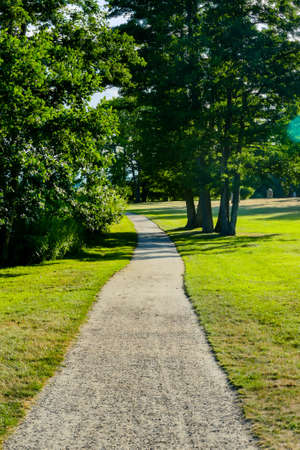 path in the park, beautiful photo digital picture