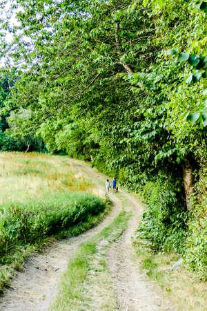path in garden, beautiful photo digital picture Standard-Bild