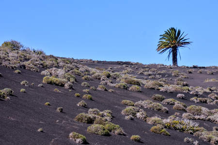 Volcanic landscapes on Timanfaya Lanzarote Canary Islands Spain 免版税图像
