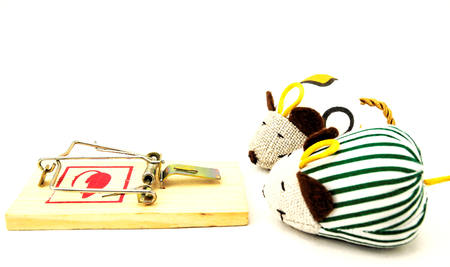 Wooden Mouse Trap on a White Background
