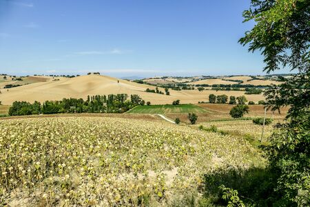 landscape in tuscany, beautiful photo digital picture