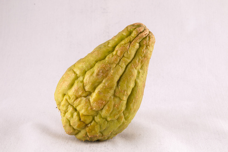 Chayote (Sechium Edule) is a Vegetable Native of South America Foto de archivo - 118152235