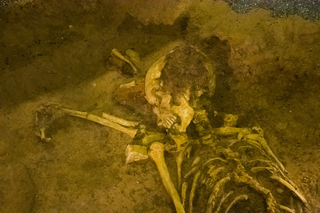 Photo picture Archaeological find skeleton of human being