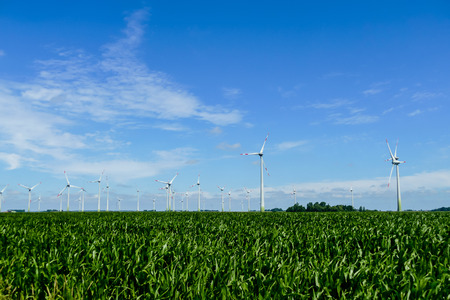 wind turbines in green field, beautiful photo digital picture