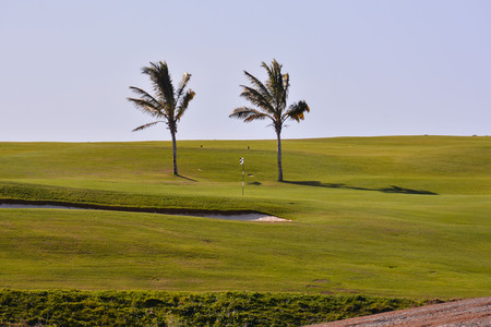 View in golf course with blue sky background