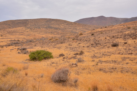 Photo PIcture of a Beautiful Landscape in South Spain