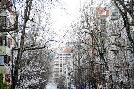 winter in the city, beautiful photo digital picture 版權商用圖片 - 122290748
