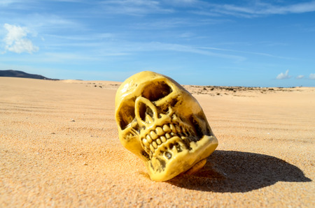 Conceptual Photo Picture of a Human Skull Object in the Dry Desert 版權商用圖片