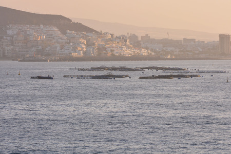 Fish Farm in the Atlantic Ocean at Sunset 版權商用圖片