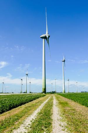 turbiny wiatrowe w terenie, piękne zdjęcie cyfrowe,