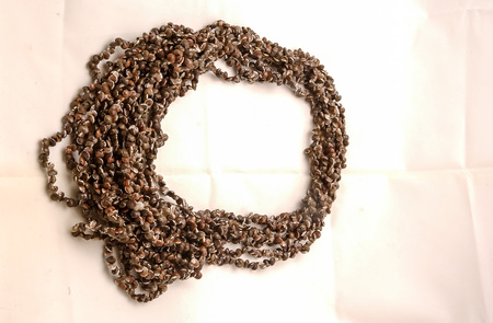 frame made of coffee beans isolated on white, beautiful photo digital picture