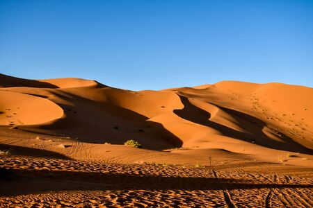 sand dunes in the desert, beautiful photo digital picture