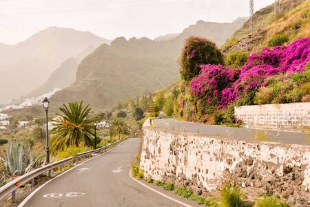 Photo Picture Scenic photography landscape European natural countryside in Agaete Gran canaria Canary islands
