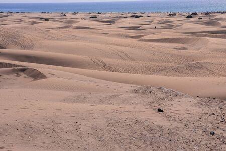 Desert with sand dunes in Maspalomas Gran Canaria Spain 版權商用圖片