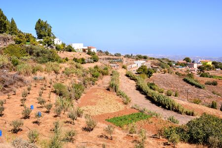 Spanish View Landscape in Gran Canaria Tropical Volcanic Canary Islands Spain