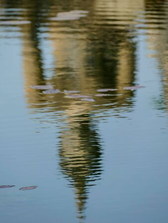 reflection of trees in water, beautiful photo digital picture