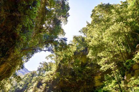 Fotobeeld van een vallei op de Canarische eilanden Stockfoto
