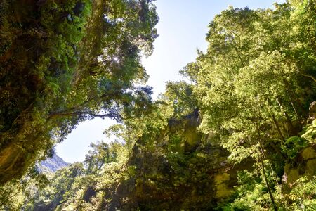 Photo Image d'une vallée des îles Canaries Banque d'images