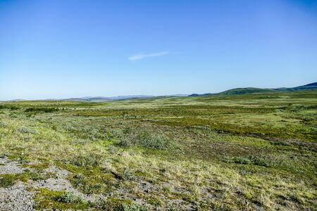 landscape with green field and blue sky, beautiful photo digital picture