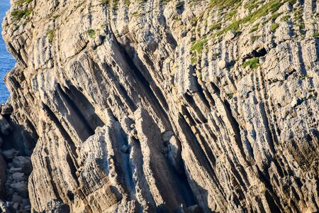 Detail of bare rocks because of low tide at Arnia beach (Pielagos, Cantabria)
