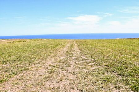 road in the field, photo as a background, digital image
