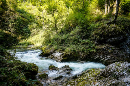 river in forest, digital photo picture as a background , taken in bled lake area, slovenia, europe Reklamní fotografie