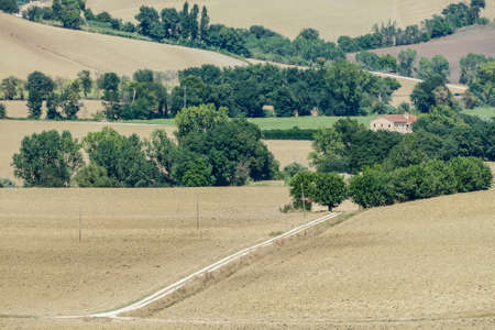 road in countryside, digital photo picture as a background , taken in Marche region, italy, , europe Stock fotó