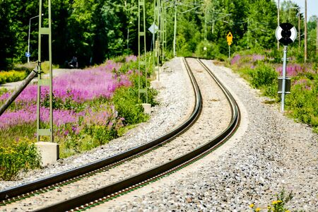 railroad in park, beautiful photo digital picture