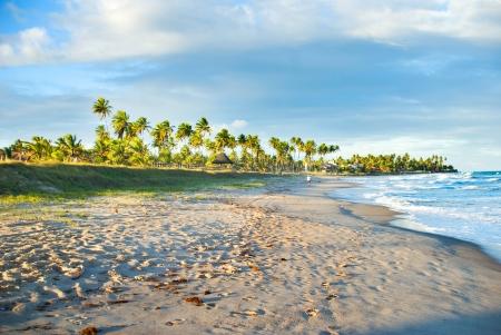 porto: Beach walk in Brazil