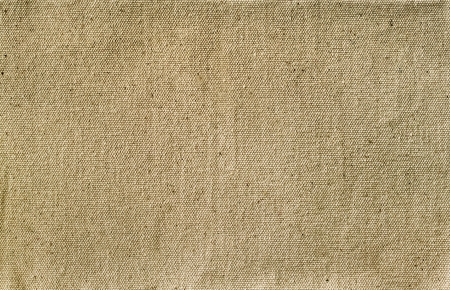 fibra: canvas texture for the background