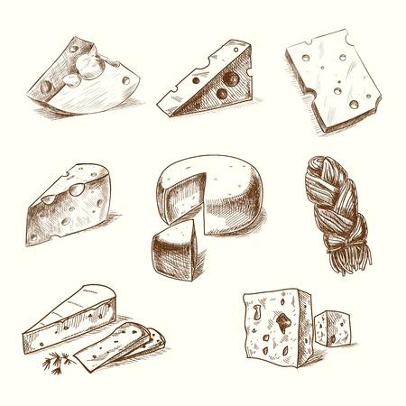 Croquis dessinés à la main doodle fromages avec différents types de fromages dans le style rétro stylisée.