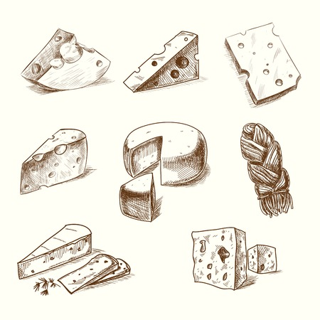 draw: Hand drawn doodle sketch cheese with different types of cheeses in retro style stylized.