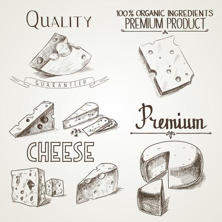 queso: Mano queso bosquejo doodle con diferentes tipos de calidad premium de quesos en estilo retro estilizado. Vectores