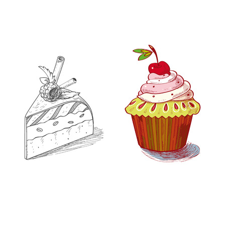 custard slices: hand drawn confections dessert pastry bakery products cupcake pie muffin. Illustration