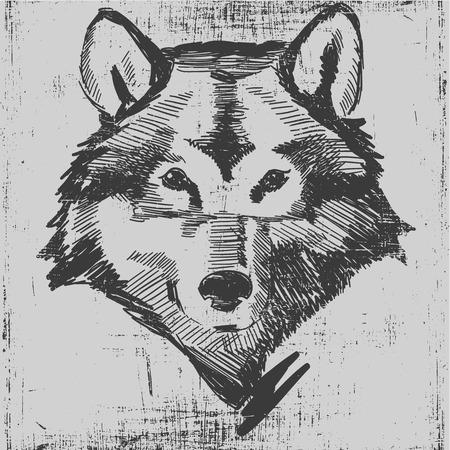 オオカミの頭は手描きのスケッチ グランジ テクスチャ スタイルの彫刻です。