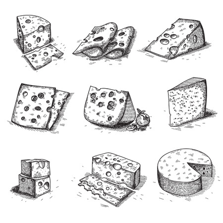 cheddar cheese: Hand drawn doodle sketch cheese with different types of cheeses in retro style stylized.