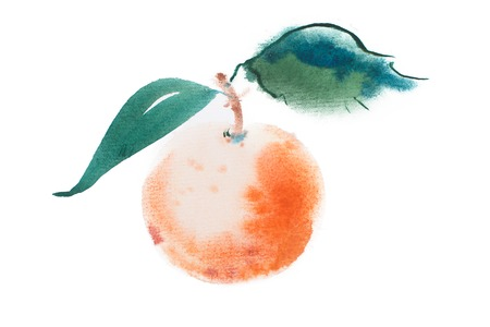 citron: Orange watercolor aquarelle hand drawn on white background. Stock Photo