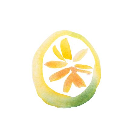 lemon slice: Yellow Lemon Slice Watercolor aquarelle hand drawn