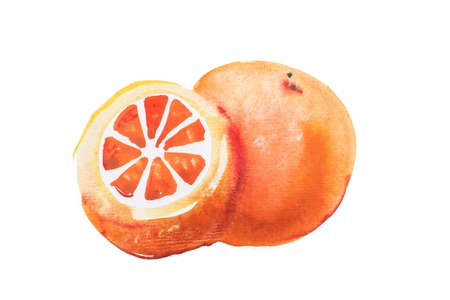 lemony: Orange watercolor aquarelle hand drawn on white background. Stock Photo