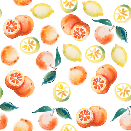 aquarelle: watercolor drawing set of tropical fruits, citrus aquarelle painting on white background.