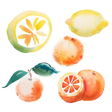 waterverftekening set van tropische vruchten, citrus aquarel schilderen op een witte achtergrond.