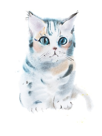 staring: hand drawn watercolor painting of cute gray curious staring kitten, sitting pussycat aquarelle drawing