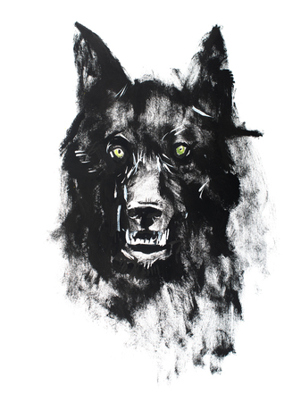 Watercolor drawing of black angry looking wolf. Animal portrait on white background