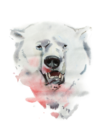 initial: Watercolor drawing of angry looking bear. Animal portrait on white background