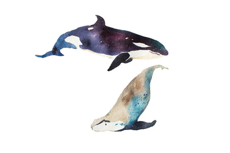 swims: Watercolor whales Hand drawn illustration on white. Stock Photo