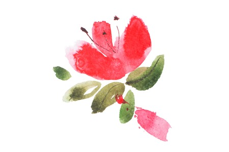 aquarelle: watercolor painting of flowers bouquet aquarelle drawing.