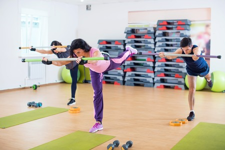 stabilization: Group of people excercising with fitbars at fitness club